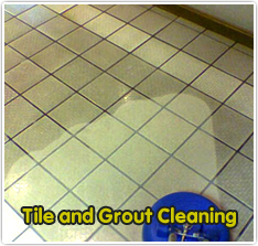 Waxhaw Carpet Cleaners tile and grout cleaning